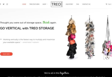 Treo Storage website development - Web Loft Designs Dallas and Plano